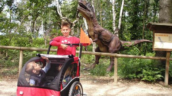 Speedy-Noleggi_zoo_in_camper